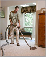 Vienna,  VA Carpet Cleaning
